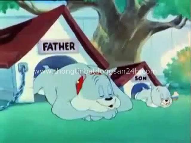 14 bài học cuộc sống soi chiếu từ phim hoạt hình Tom và Jerry, điều số 9 nhiều người đã mắc phải! - Ảnh 12.