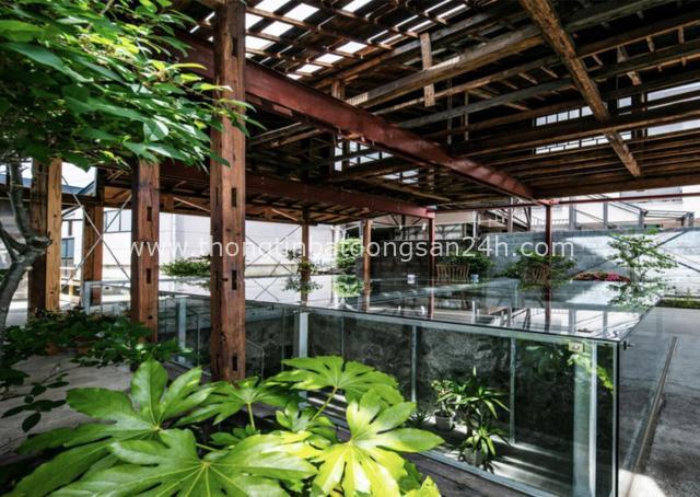 Cặp vợ chồng người Nhật quyết định cải tạo biệt thự cổ rộng 550m² để thay bằng nhà vườn gần gũi với thiên nhiên - Ảnh 11.