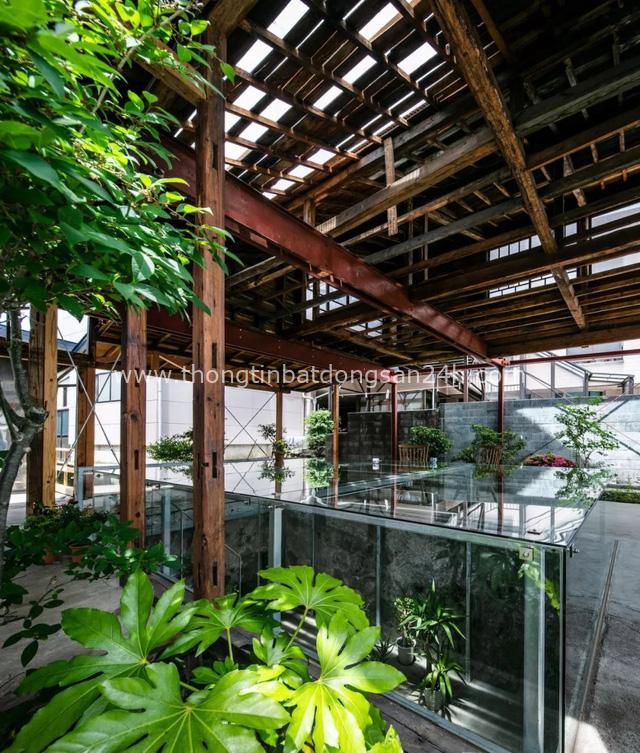 Cặp vợ chồng người Nhật quyết định cải tạo biệt thự cổ rộng 550m² để thay bằng nhà vườn gần gũi với thiên nhiên - Ảnh 24.