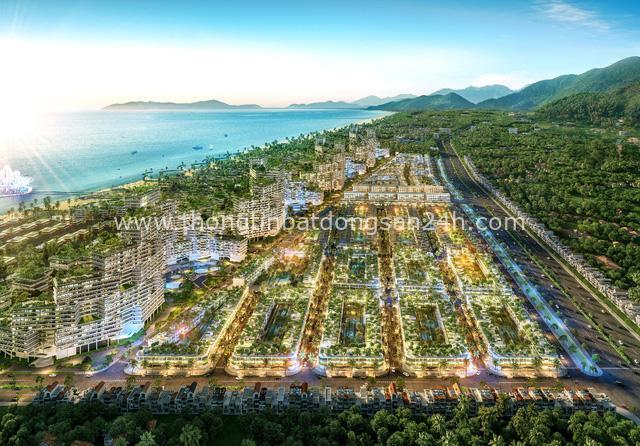 Giới đầu tư tăng tốc đổ về Bình Thuận sau công bố quy hoạch Tân Thành - Ảnh 3.