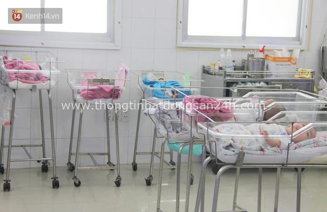 Mẹ đẻ ở bệnh viện Từ Dũ rồi bỏ đi biệt tích, 3 bé gái 4 tháng tuổi phải chuyển đến nơi nuôi trẻ mồ côi trước Tết 2