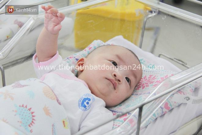 Mẹ đẻ ở bệnh viện Từ Dũ rồi bỏ đi biệt tích, 3 bé gái 4 tháng tuổi phải chuyển đến nơi nuôi trẻ mồ côi trước Tết 3