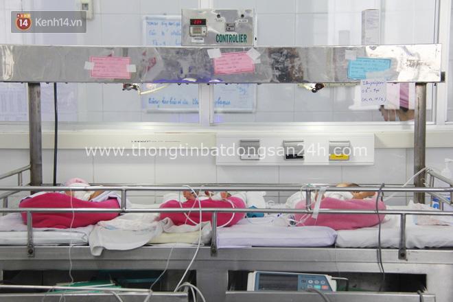 Mẹ đẻ ở bệnh viện Từ Dũ rồi bỏ đi biệt tích, 3 bé gái 4 tháng tuổi phải chuyển đến nơi nuôi trẻ mồ côi trước Tết 5