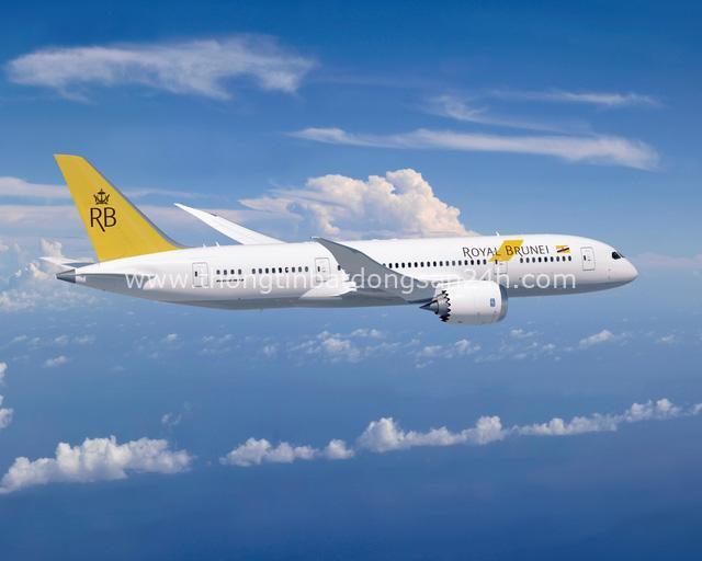Năm mới, thoả thích bay, đi mê say cùng Royal Brunei Airlines - Ảnh 4.