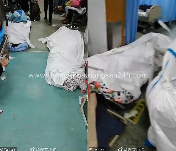 SCMP: Bệnh viện Vũ Hán vỡ trận, khung cảnh như ngày tận thế, thi thể bị bỏ ở ngay giữa hành lang - Ảnh 1.
