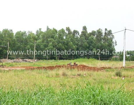 Bắc Giang, Hải Dương được chuyển đổi mục đích sử dụng đất 6