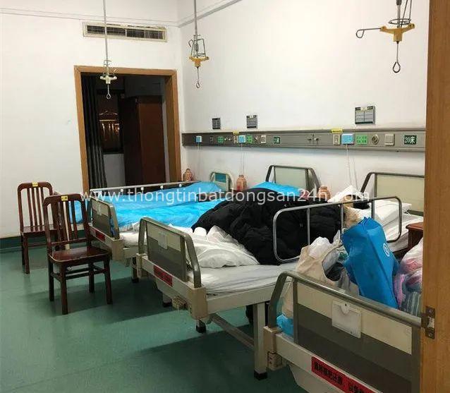 Bi kịch gia đình Vũ Hán: Con gái từ Anh về chăm mẹ bị ung thư, không lâu sau hai bố con dương tính với Covid-19 và nỗi đau không ai thấu - Ảnh 9.
