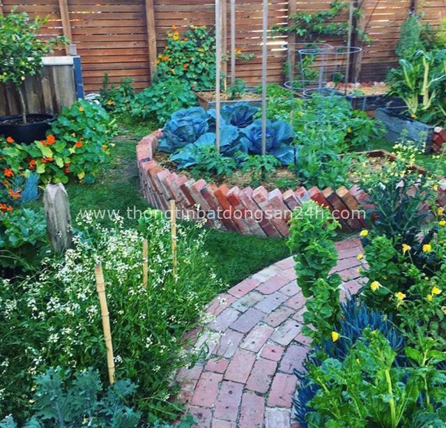 Khu vườn mùa xuân đẹp như tranh vẽ với đủ loại trái cây và rau củ của đôi vợ chồng đam mê trồng trọt - Ảnh 9.