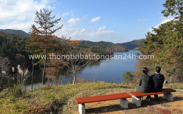 Sững sờ trước cảnh sắc thiên nhiên tuyệt mỹ tại thành phố Toyota, Nhật Bản 4