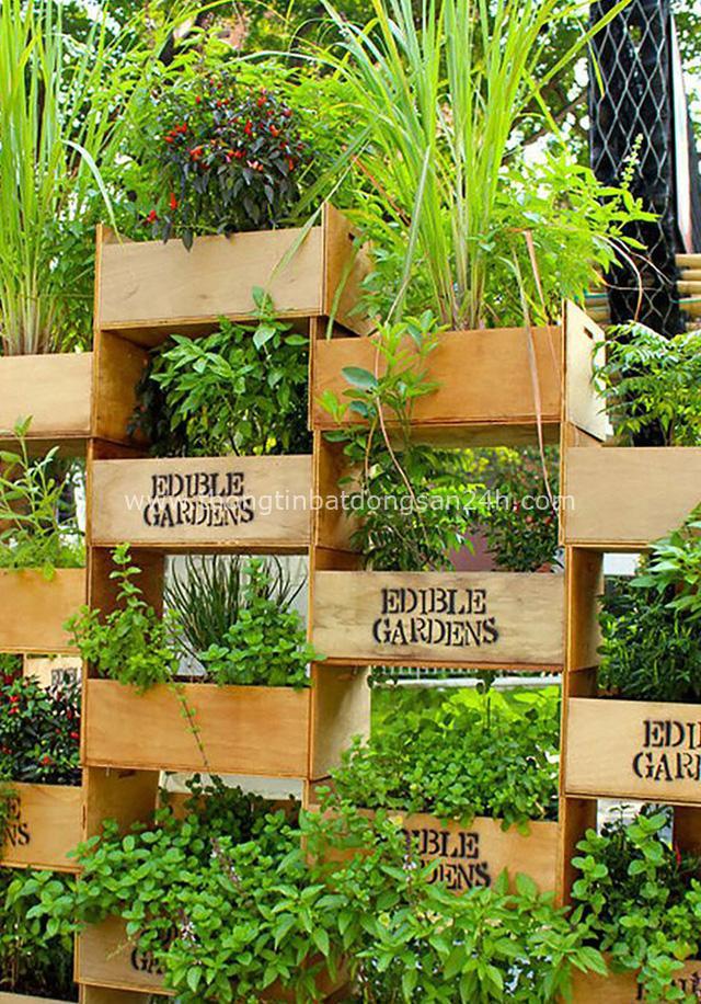 15 vườn rau tự tạo từ những ý tưởng độc đáo không ngờ - Ảnh 12.