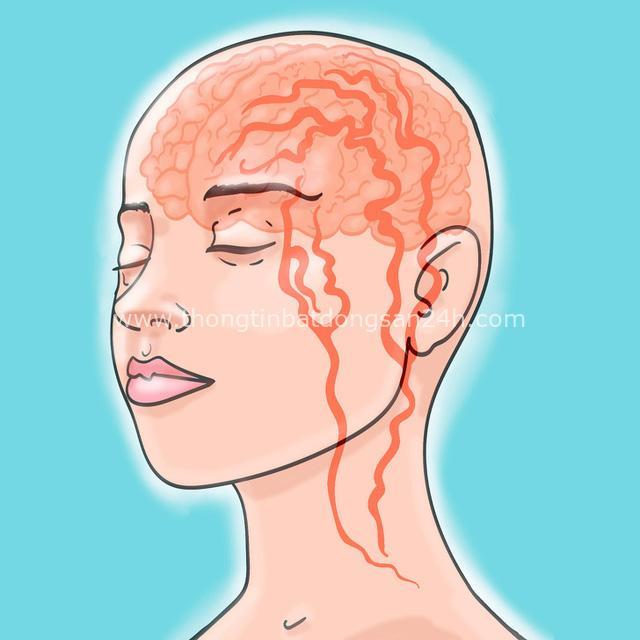 12 căn bệnh nguy hiểm có triệu chứng dễ bị nhầm lẫn, đừng chủ quan bỏ qua khiến bệnh tiến triển nhanh và chuyển biến cực xấu! - Ảnh 8.
