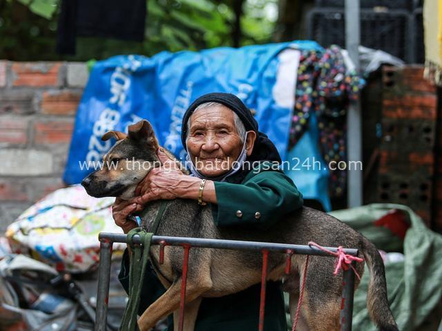 Cuộc sống chật vật mùa dịch trong khu ổ chuột: Tuổi già neo đơn chỉ có cậu vàng bầu bạn, vất vả nhặt nhạnh đồng nát nhưng vẫn nheo mắt cười vỗ về chú chó yêu con mà - Ảnh 3.