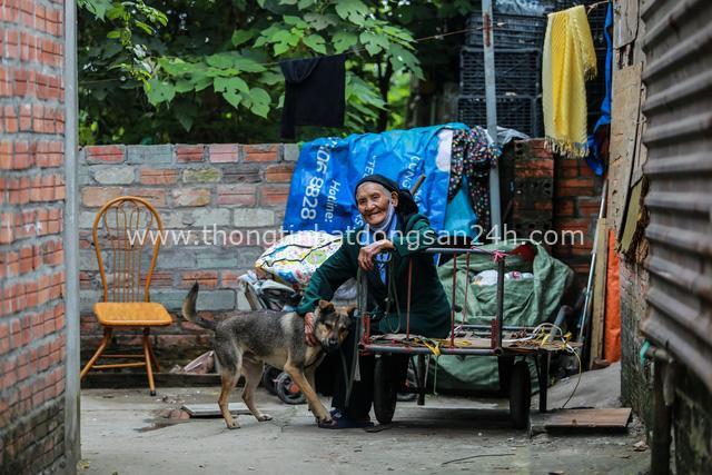 Cuộc sống chật vật mùa dịch trong khu ổ chuột: Tuổi già neo đơn chỉ có cậu vàng bầu bạn, vất vả nhặt nhạnh đồng nát nhưng vẫn nheo mắt cười vỗ về chú chó yêu con mà - Ảnh 4.
