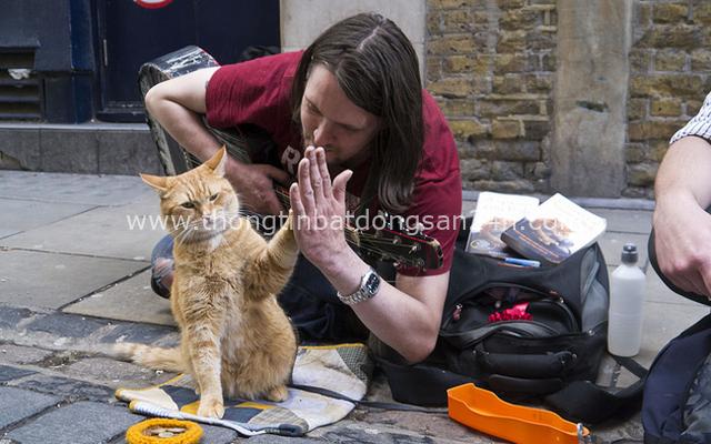 Cứu 1 con mèo hoang, người đàn ông bất ngờ đổi đời theo cách không ai nghĩ đến - Ảnh 2.