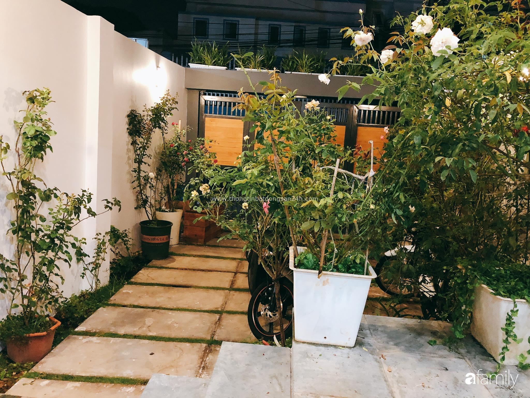 Nhà 35m² được cải tạo thành không gian sống hiện đại với ánh sáng ngập tràn cùng những chất liệu thân thiện với môi trường ở Vũng Tàu - Ảnh 4.