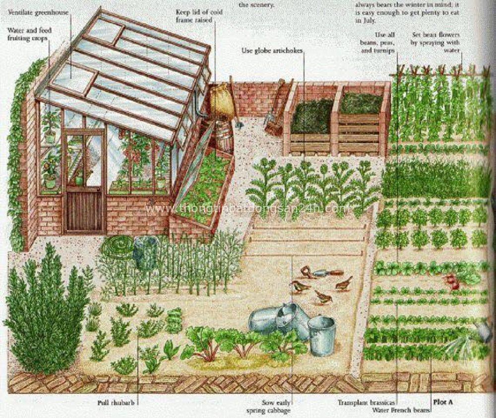 Bất động sản Farmstay (KỲ I): Từ mô hình trang trại đến các hợp đồng đầu tư 1
