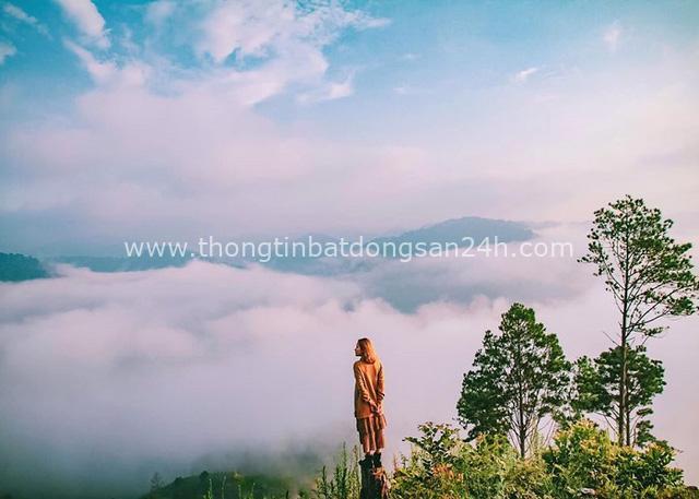 Địa điểm săn mây hot nhất Đà Lạt chính thức đóng cửa: Du khách xả rác bừa bãi, dẫm nát cây xanh, nẹt pô inh ỏi 4-5 giờ sáng - Ảnh 1.