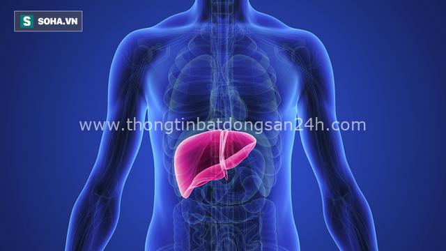 Đông y mách bạn cách dưỡng ngũ tạng: Bệnh chỉ là ngọn, phải phòng chữa từ gốc - Ảnh 2.