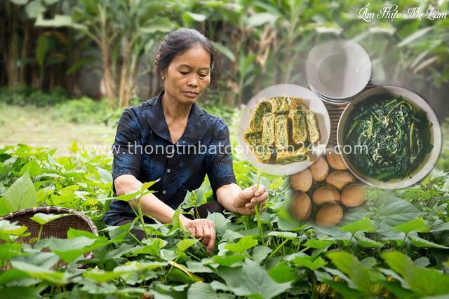 Kênh YouTube Ẩm thực mẹ làm của Việt Nam được chính YouTube giới thiệu với bạn bè quốc tế trên trang twitter - Ảnh 3.
