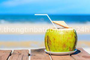 Thức uống mùa hè tốt cho sức khỏe - Ảnh 2.