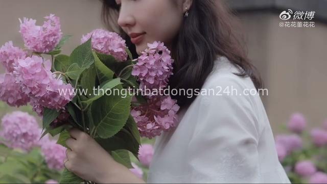 Vợ chủ tịch Taobao chính thức phản đòn nhân tình của chồng bằng vlog đầy ẩn ý trong khi nam chính vẫn quyết im lặng - Ảnh 2.