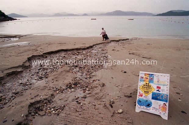 Vùng biển nhuốm máu: Chương sử kinh hoàng với người Hong Kong, nơi có nhiều người bị cá mập cắn chết bậc nhất hành tinh - Ảnh 2.