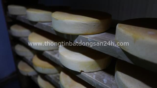 Báo CNN hết lời ca ngợi Việt Nam có một nơi sản xuất được các món phô mai ngon nhất châu Á mà nói ra ai cũng thấy siêu quen thuộc - Ảnh 10.