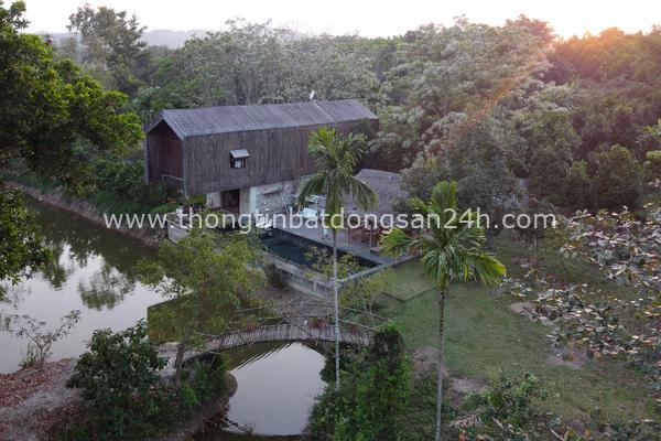 Cuộc sống tiên cảnh tại ngôi nhà bên sườn đồi ở Đà Nẵng 1