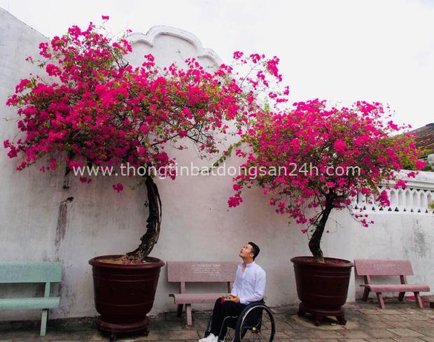 Đi phượt 30 tỉnh/thành bằng xe lăn, nam thanh niên 29 tuổi mong có bằng lái quốc tế để chinh phục các nước láng giềng - Ảnh 3.
