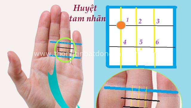 Kéo dài tuổi thọ, sức khoẻ thăng hạng, chữa bệnh đau dạ dày đơn giản chỉ nhờ bấm đúng 1 huyệt trên bàn tay - Ảnh 1.
