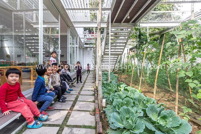 Lớp học giữa không gian cây và hoa tại thành phố Hạ Long - Ảnh 11.