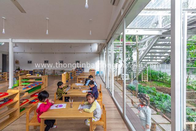 Lớp học giữa không gian cây và hoa tại thành phố Hạ Long - Ảnh 15.