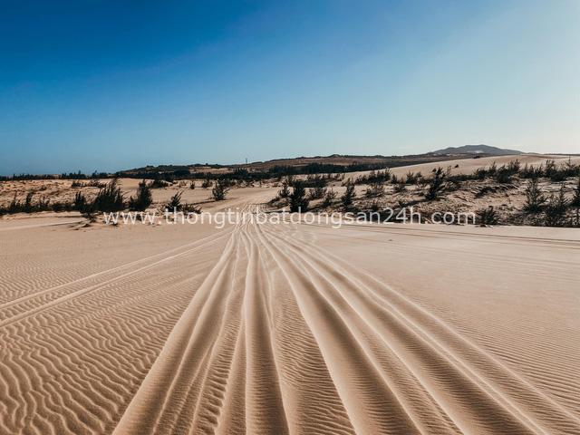 Ngắm hoàng hôn mê hoặc trên đồi cát, chiêm ngưỡng cung đường biển đẹp tuyệt đỉnh: Mũi Né, có tất thảy! - Ảnh 11.