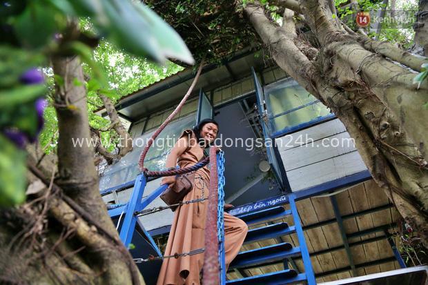 Ngay Hà Nội có một căn nhà cheo leo trên đỉnh ngọn cây của người họa sĩ 61 tuổi: Gần 20 năm trồng và đợi cây lớn - Ảnh 4.