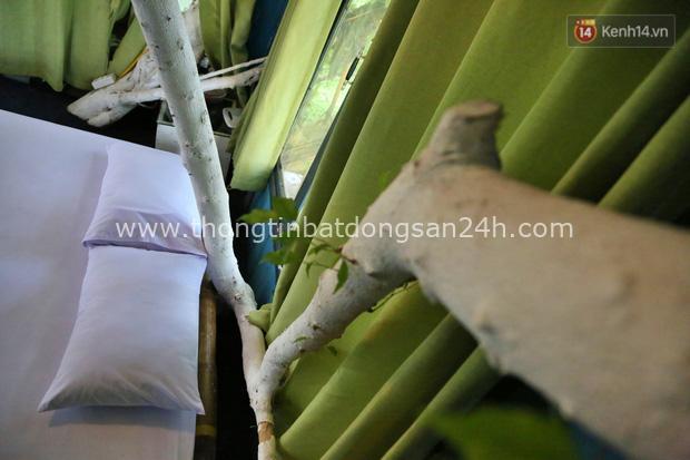 Ngay Hà Nội có một căn nhà cheo leo trên đỉnh ngọn cây của người họa sĩ 61 tuổi: Gần 20 năm trồng và đợi cây lớn - Ảnh 9.