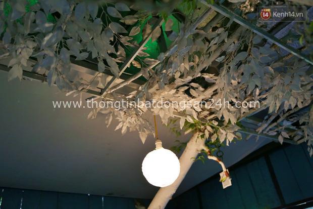 Ngay Hà Nội có một căn nhà cheo leo trên đỉnh ngọn cây của người họa sĩ 61 tuổi: Gần 20 năm trồng và đợi cây lớn - Ảnh 10.
