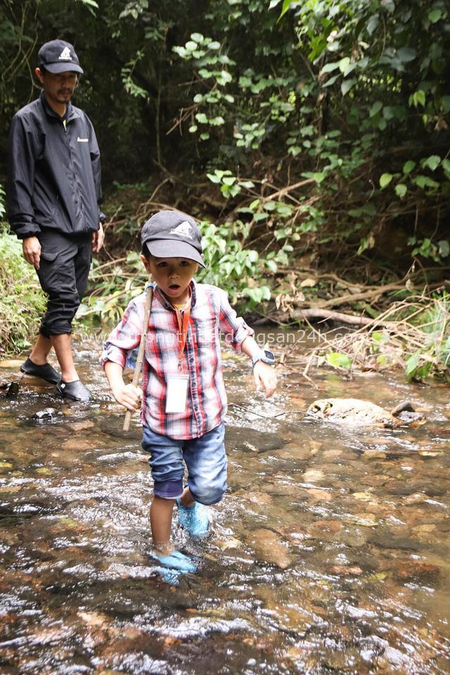 """Ông bố Hà Nội bỏ việc vì nghiện con: Cùng con """"đi đu đưa"""" từ 6 tháng tuổi, 3 tuổi đã """"thả"""" con đi khám phá đảo hoang, cứu hộ rùa - Ảnh 8."""