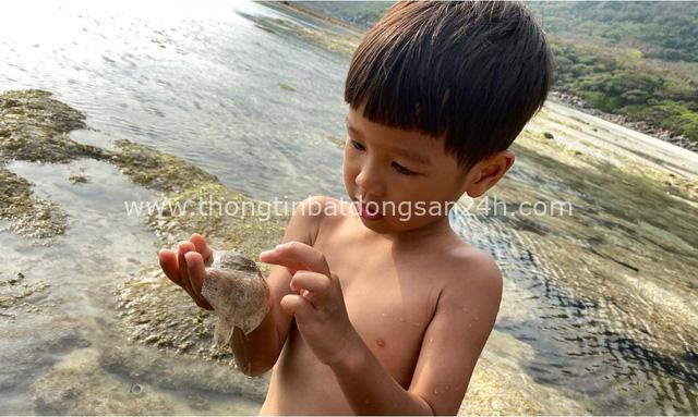 """Ông bố Hà Nội bỏ việc vì nghiện con: Cùng con """"đi đu đưa"""" từ 6 tháng tuổi, 3 tuổi đã """"thả"""" con đi khám phá đảo hoang, cứu hộ rùa - Ảnh 9."""