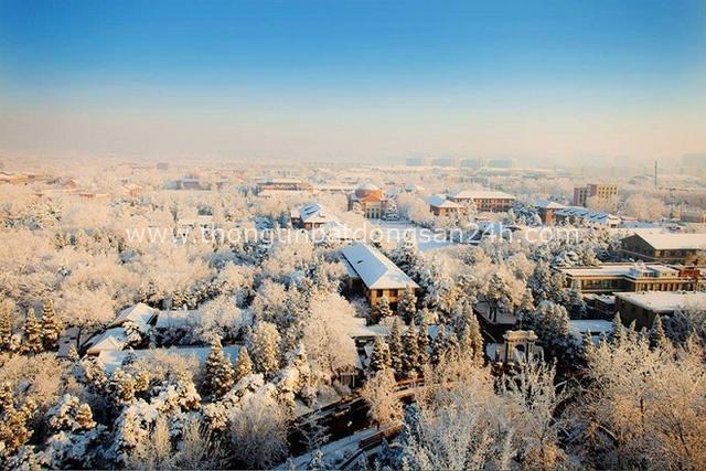 Trường Đại học được mệnh danh là Havard châu Á, vừa hiện đại, vừa cổ kính như phim cung đấu - Ảnh 4.