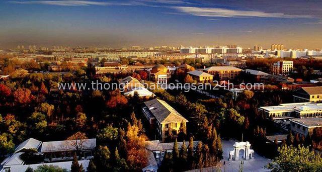 Trường Đại học được mệnh danh là Havard châu Á, vừa hiện đại, vừa cổ kính như phim cung đấu - Ảnh 18.