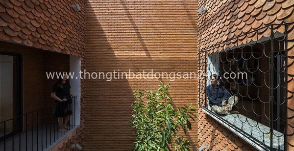 """Độc đáo căn nhà """"vảy cá"""" có 4 mái hiên ở Tây Ninh 6"""
