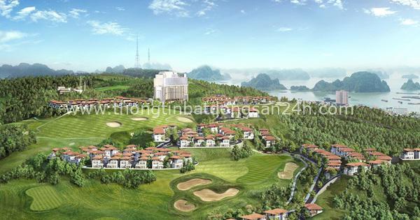 FLC xin dừng nghiên cứu lập quy hoạch siêu dự án hơn 600ha tại Quảng Ninh 5